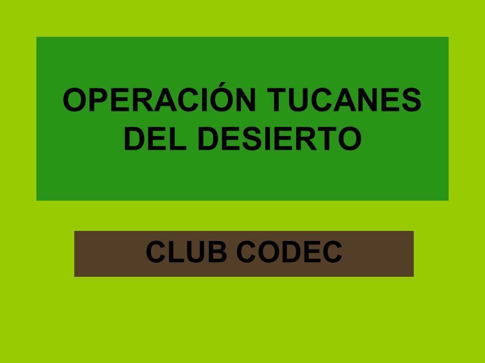 OPERACIÓN TUCANES DEL DESIERTO CLUB CODEC