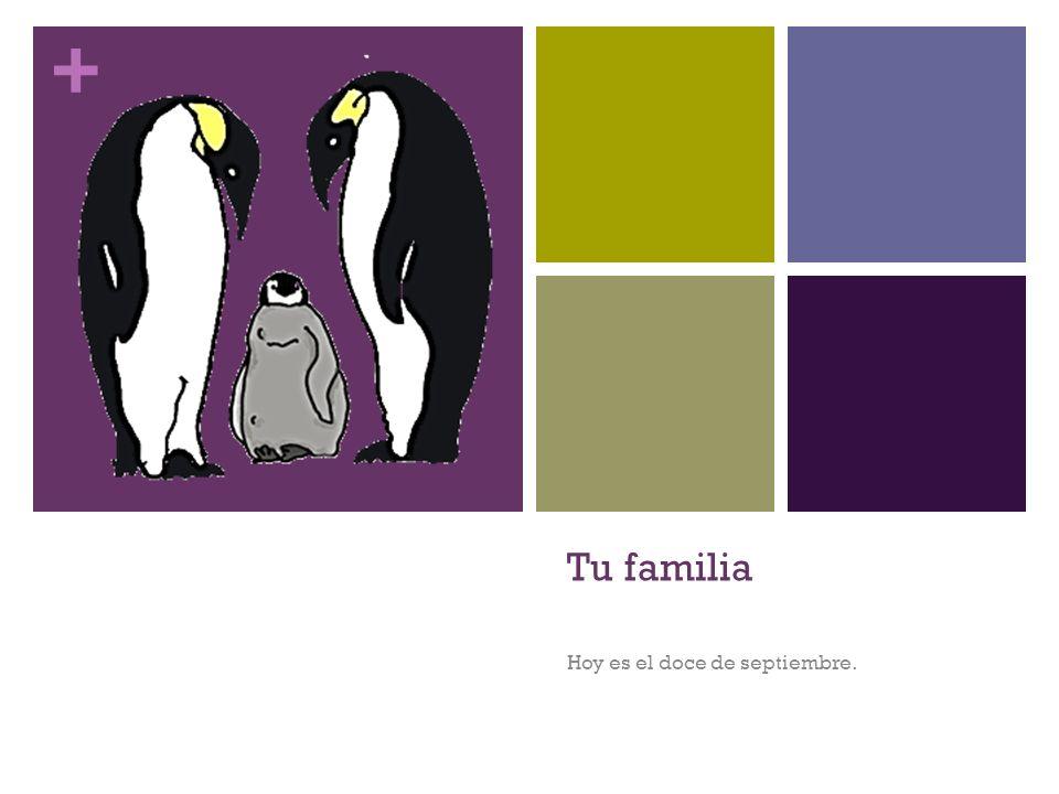 + Tu familia Hoy es el doce de septiembre.