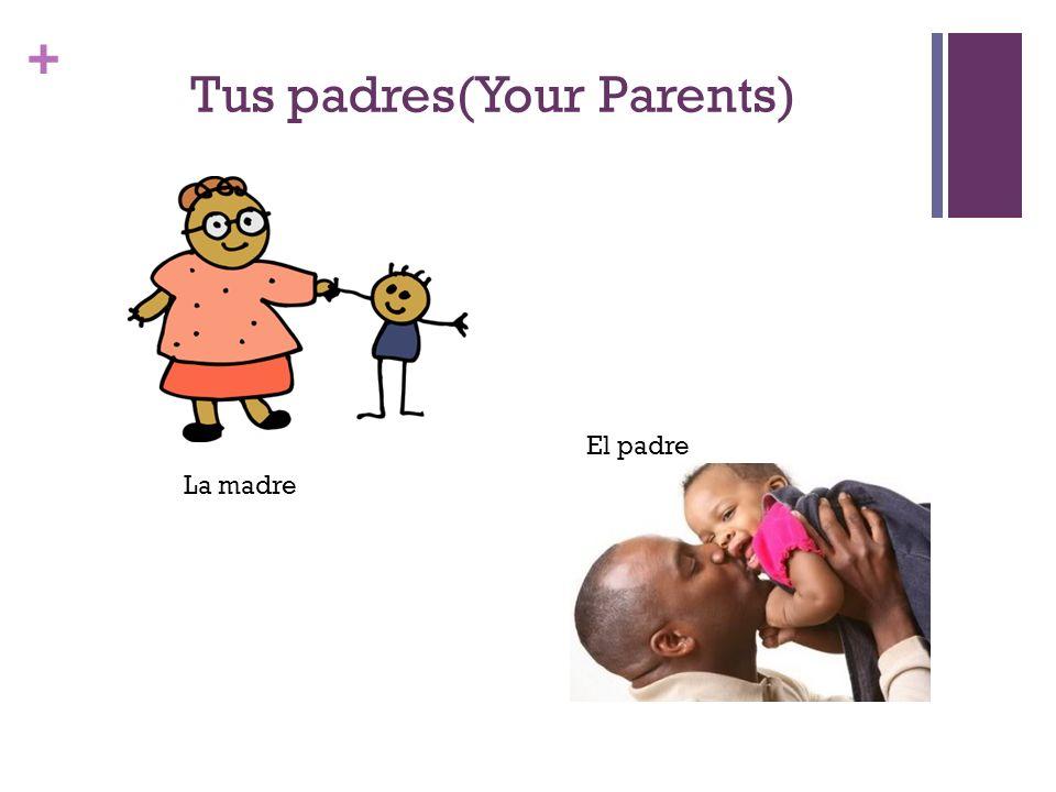+ Los niños (Children) El hijo(son) (el niño)(boy) La hija (daughter) La niña (girl)