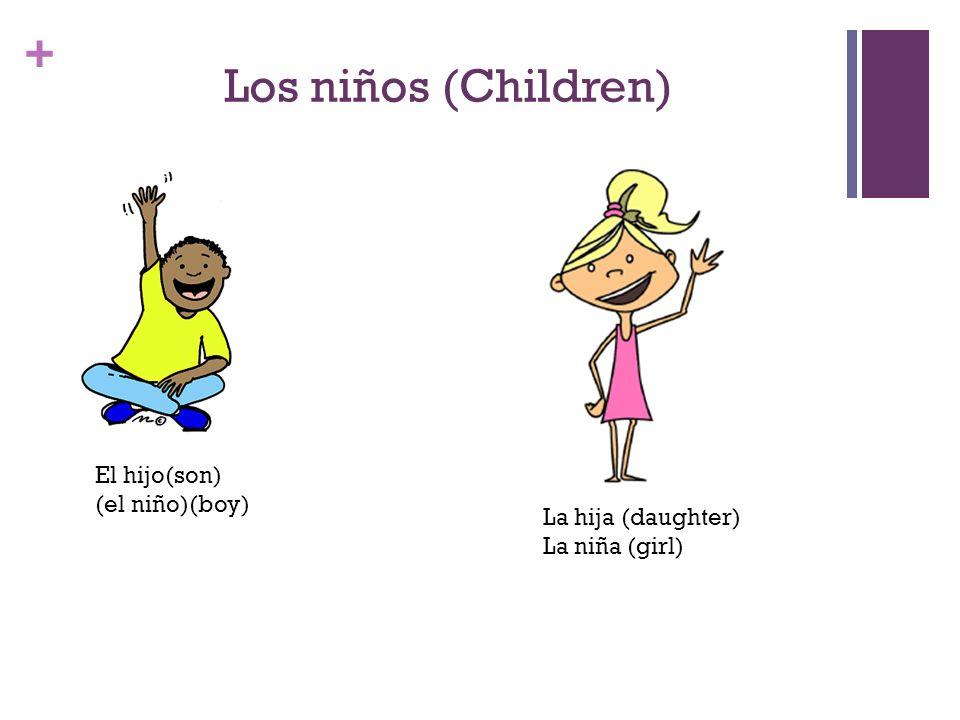 + Tus abuelos(Your grandparents) El abuelo (grandfather) La abuela(grandmother)