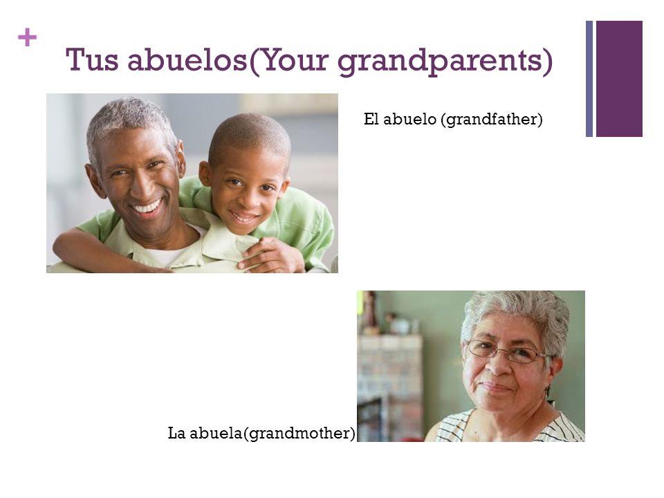 + Hermanos y Hermanas (brothers and sisters) Las hermanas (sisters) Los hermanos (brothers)