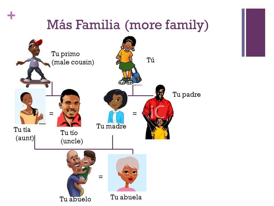 + Más Familia (more family) Tú Tu madre Tu padre = = Tu abuela Tu abuelo Tu tío (uncle) Tu tía (aunt) = Tu primo (male cousin)