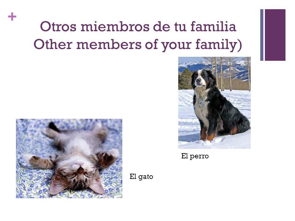 + Otros miembros de tu familia Other members of your family) El gato El perro