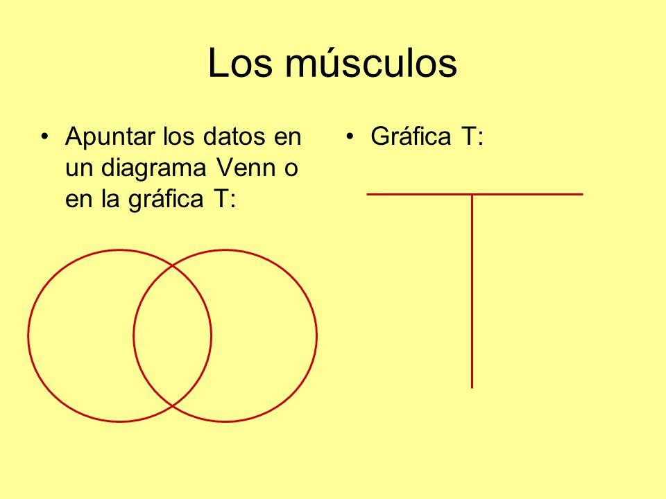Los músculos Apuntar los datos en un diagrama Venn o en la gráfica T: Gráfica T:
