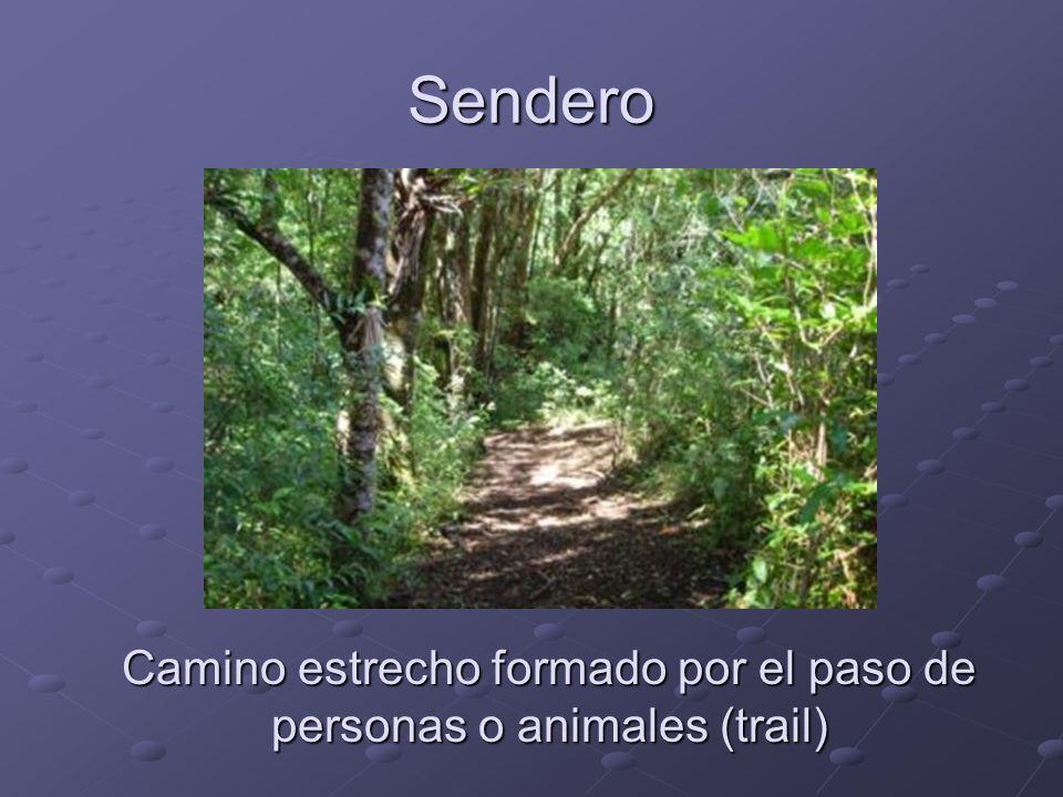 Sendero Camino estrecho formado por el paso de personas o animales (trail)