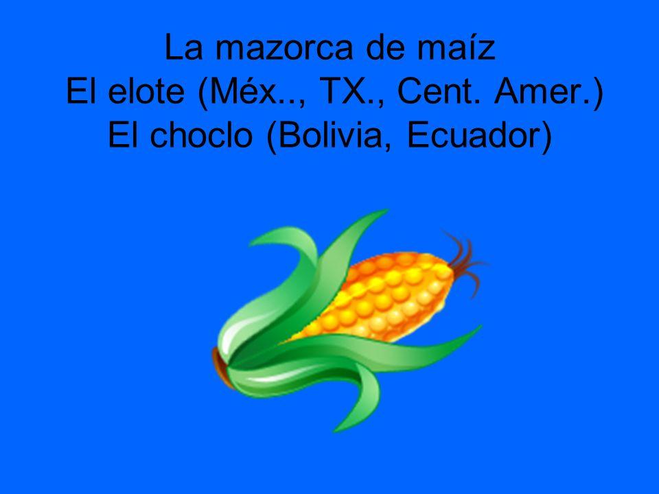 La mazorca de maíz El elote (Méx.., TX., Cent. Amer.) El choclo (Bolivia, Ecuador)