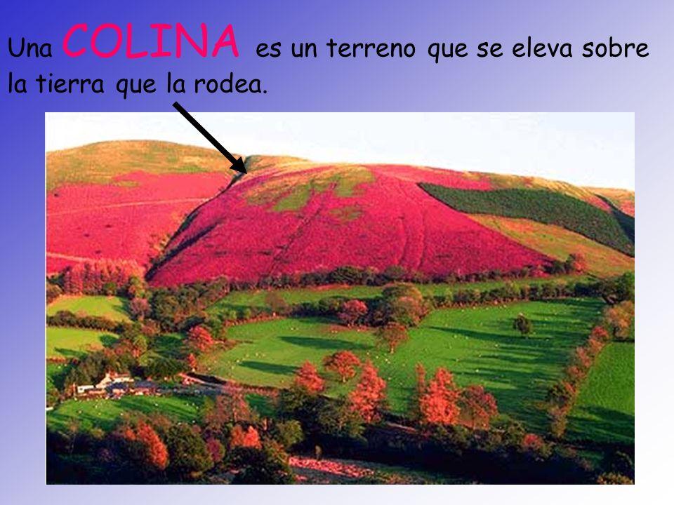 Una COLINA es un terreno que se eleva sobre la tierra que la rodea.