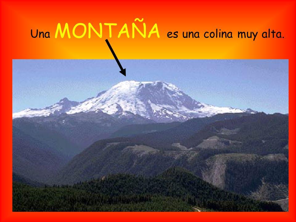Un VALLE es una tierra baja entre colinas o montañas.