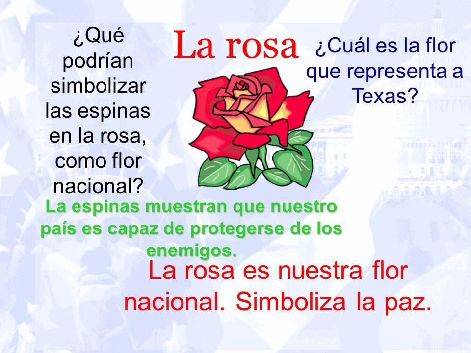 La rosa La rosa es nuestra flor nacional. Simboliza la paz. ¿Qué podrían simbolizar las espinas en la rosa, como flor nacional? ¿Cuál es la flor que r