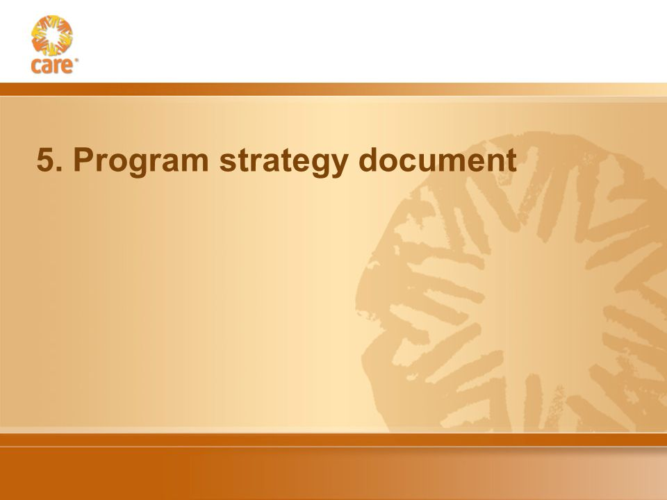 5. Program strategy document