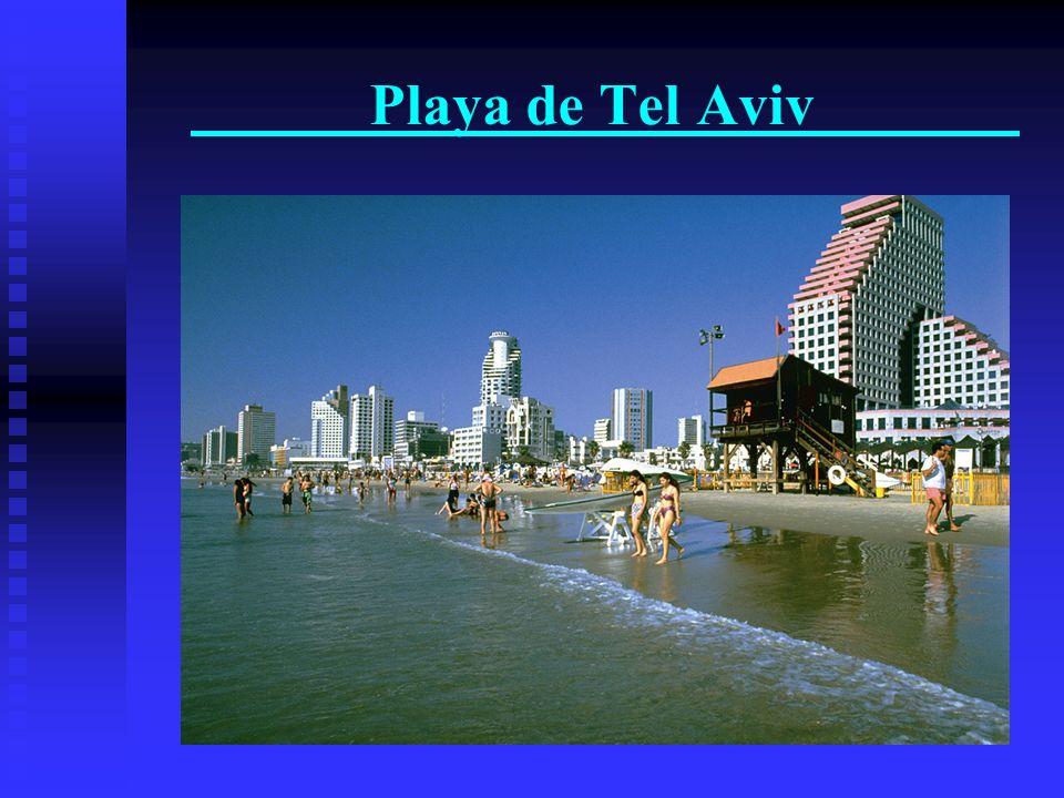 Tel-Aviv – la ciudad que no dorme nunca La vieja ciudad de Yafo – el puerto, las galerias e las oficinas de arte La vieja ciudad de Yafo – el puerto,