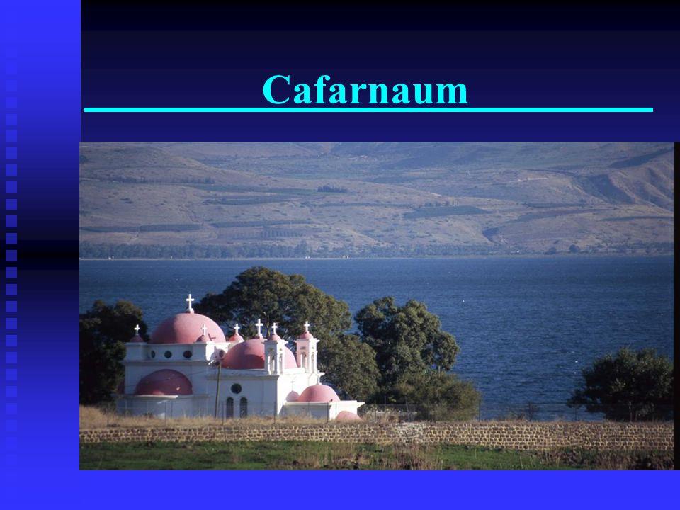 El Galil k Paseo de barco en el Mar de Galilea, Cafernaum, Tabgha, Monte de las Bien Aventuranzas, Yardenit Paseo de barco en el Mar de Galilea, Cafer