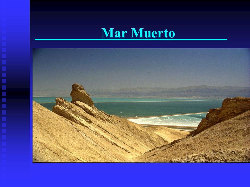 Mar Muerto Punto mas bajo de la tierra - 400 metros Punto mas bajo de la tierra - 400 metros 30% de salinidade 30% de salinidade Masada Masada Qumran