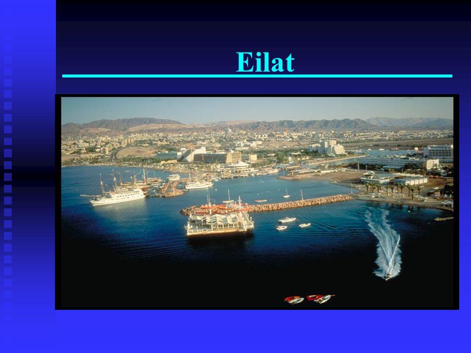Eilat. Observatorio Submarino Observatorio Submarino Magnifico Recife de Corales Magnifico Recife de Corales Mergullo o Snorkel en el Mar Rojo Mergull