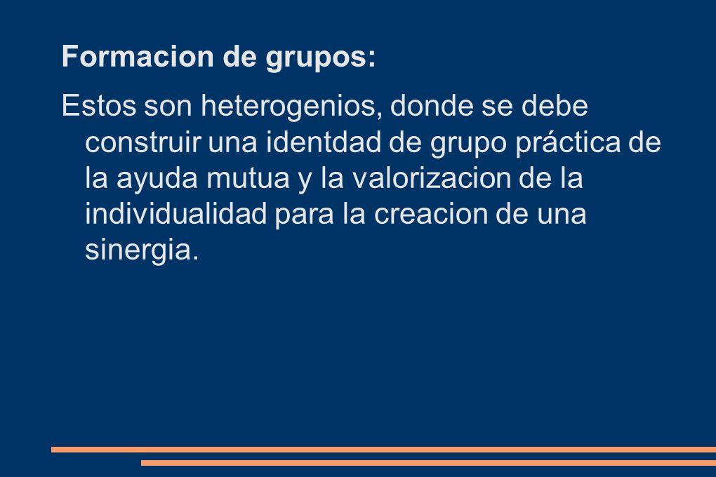 Formacion de grupos: Estos son heterogenios, donde se debe construir una identdad de grupo práctica de la ayuda mutua y la valorizacion de la individu