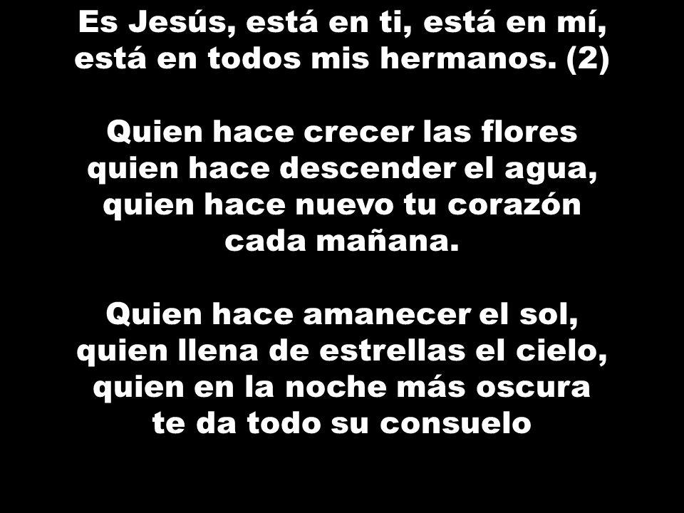 Es Jesús, está en ti, está en mí, está en todos mis hermanos. (2) Quien hace crecer las flores quien hace descender el agua, quien hace nuevo tu coraz