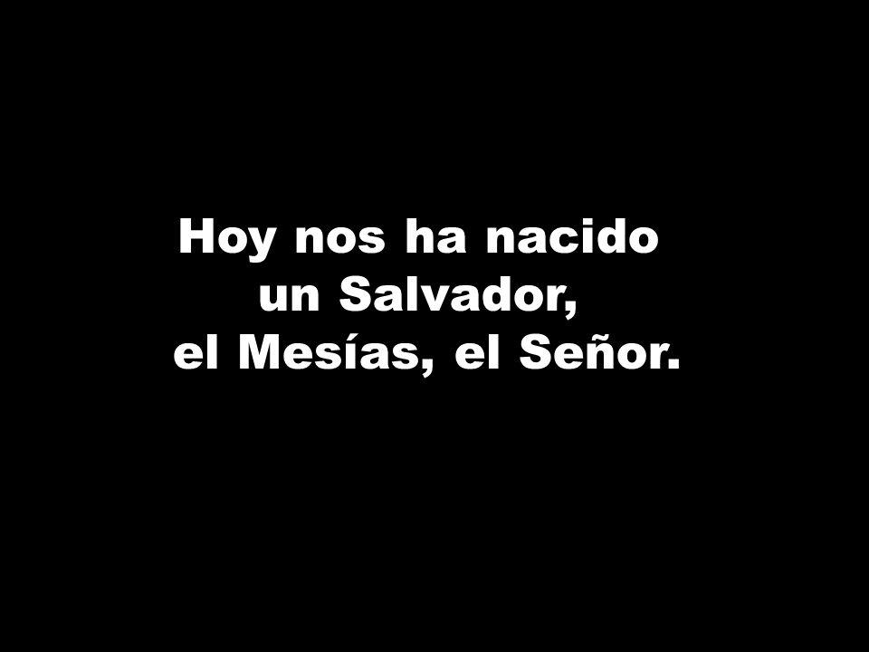 Hoy nos ha nacido un Salvador, el Mesías, el Señor.