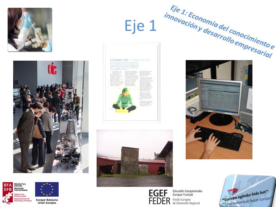 Eje 1 Temas prioritarios/ Entidades/ Operación Inversión certificada a 31/12/2012 % respecto a total 2007-2013 Observaciones 1.02: DFB.
