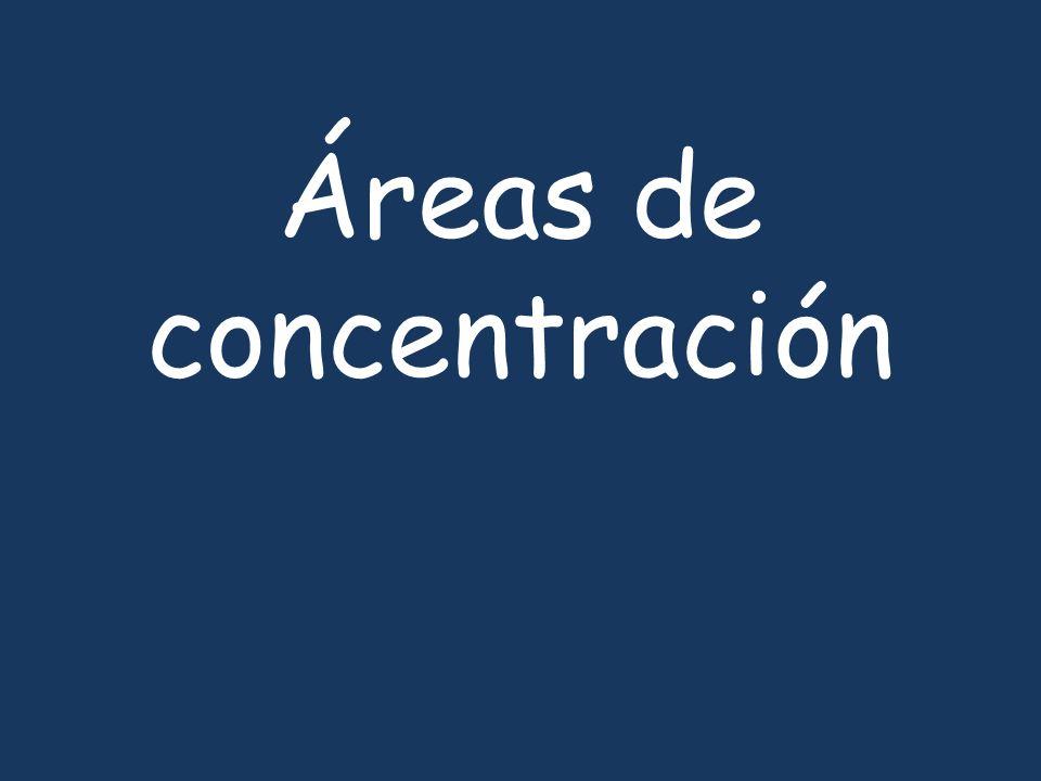 Áreas de concentración