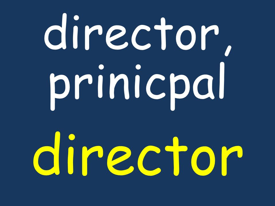 director, prinicpal director