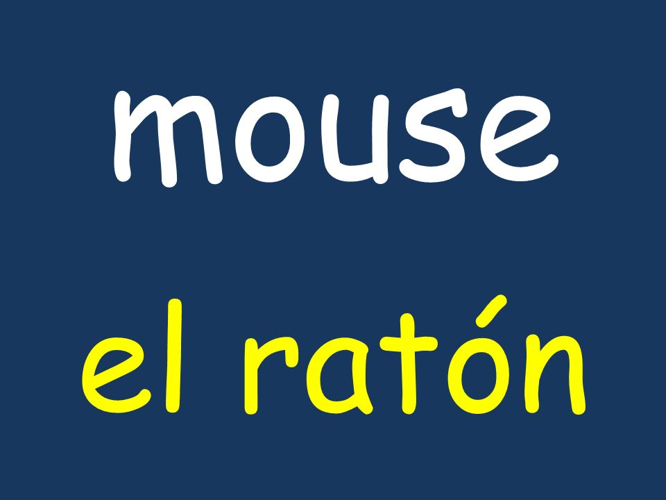 mouse el ratón