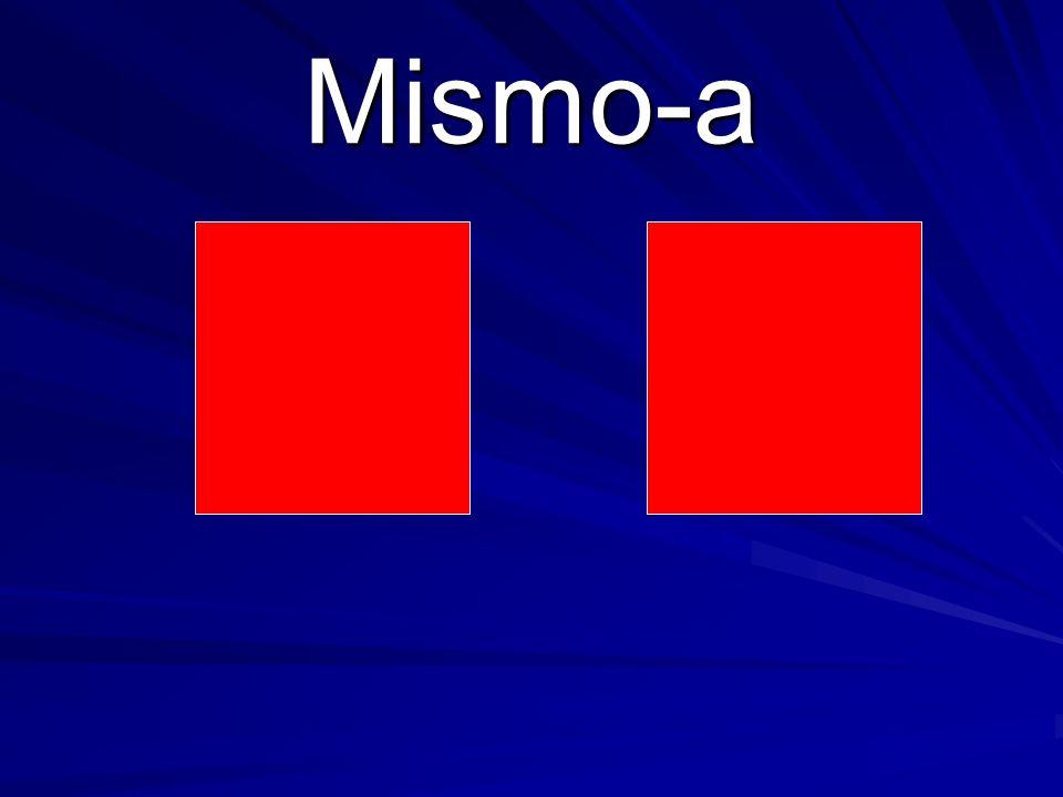 Mismo-a