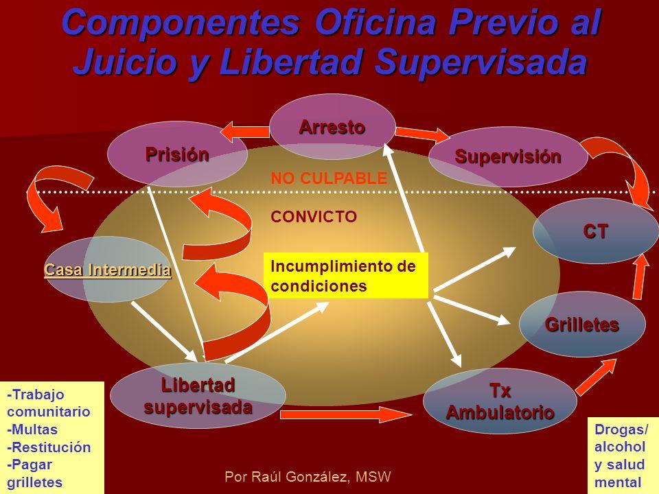 Componentes Oficina Previo al Juicio y Libertad Supervisada Arresto Supervisión CT Grilletes Tx Ambulatorio Libertad supervisada Prisión Casa Intermed