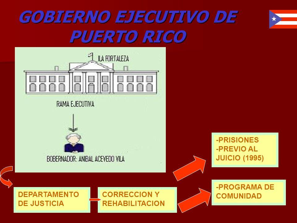 GOBIERNO EJECUTIVO DE PUERTO RICO DEPARTAMENTO DE JUSTICIA CORRECCION Y REHABILITACION -PRISIONES -PREVIO AL JUICIO (1995) -PROGRAMA DE COMUNIDAD