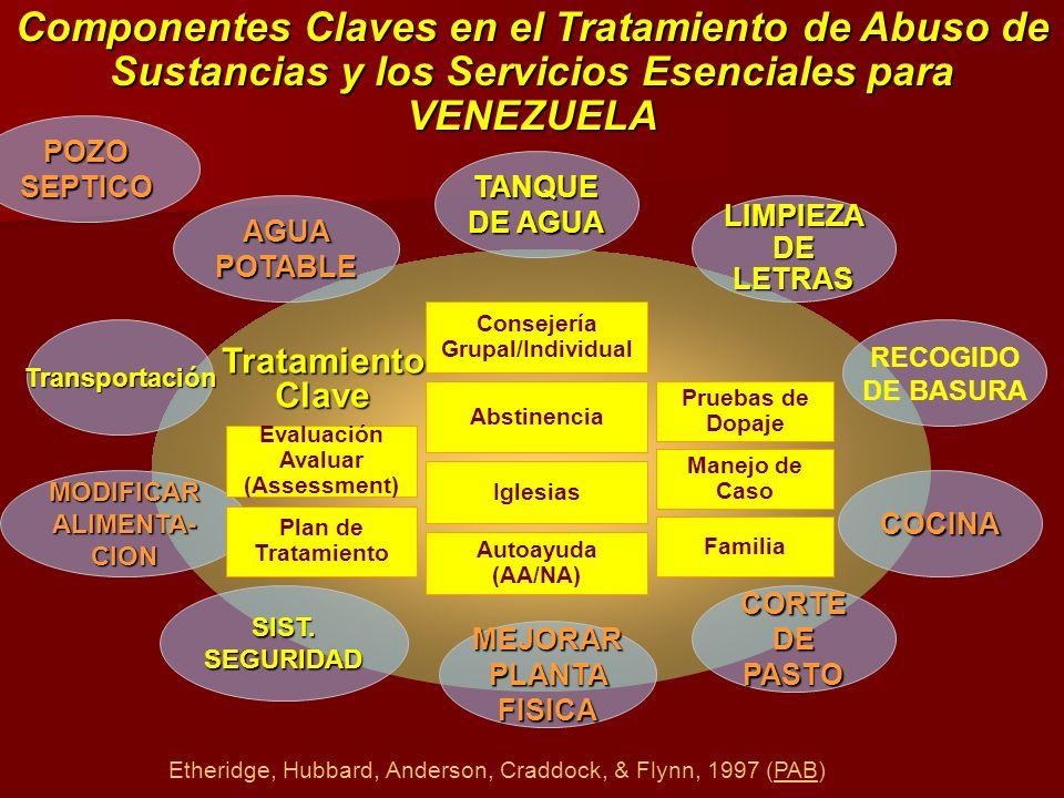 Componentes Claves en el Tratamiento de Abuso de Sustancias y los Servicios Esenciales para VENEZUELA TANQUE DE AGUA LIMPIEZA DE LETRAS RECOGIDO DE BA