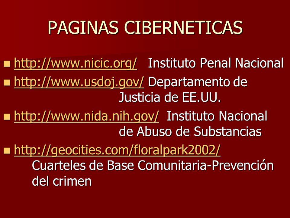 PAGINAS CIBERNETICAS http://www.nicic.org/Instituto Penal Nacional http://www.nicic.org/Instituto Penal Nacional http://www.nicic.org/ http://www.usdo