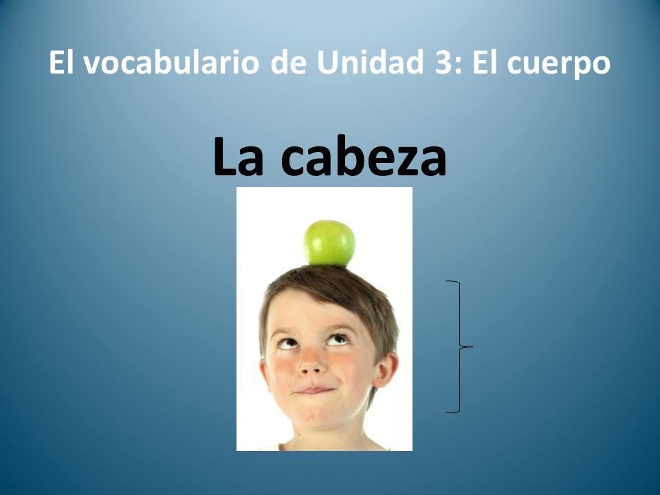 El vocabulario de Unidad 3: El cuerpo La cabeza