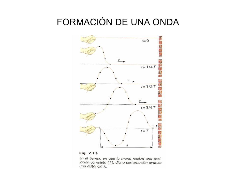 FORMACIÓN DE UNA ONDA
