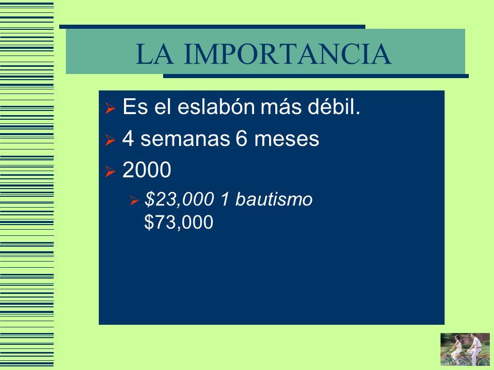 LA IMPORTANCIA Es el eslabón más débil. 4 semanas 6 meses 2000 $23,000 1 bautismo $73,000