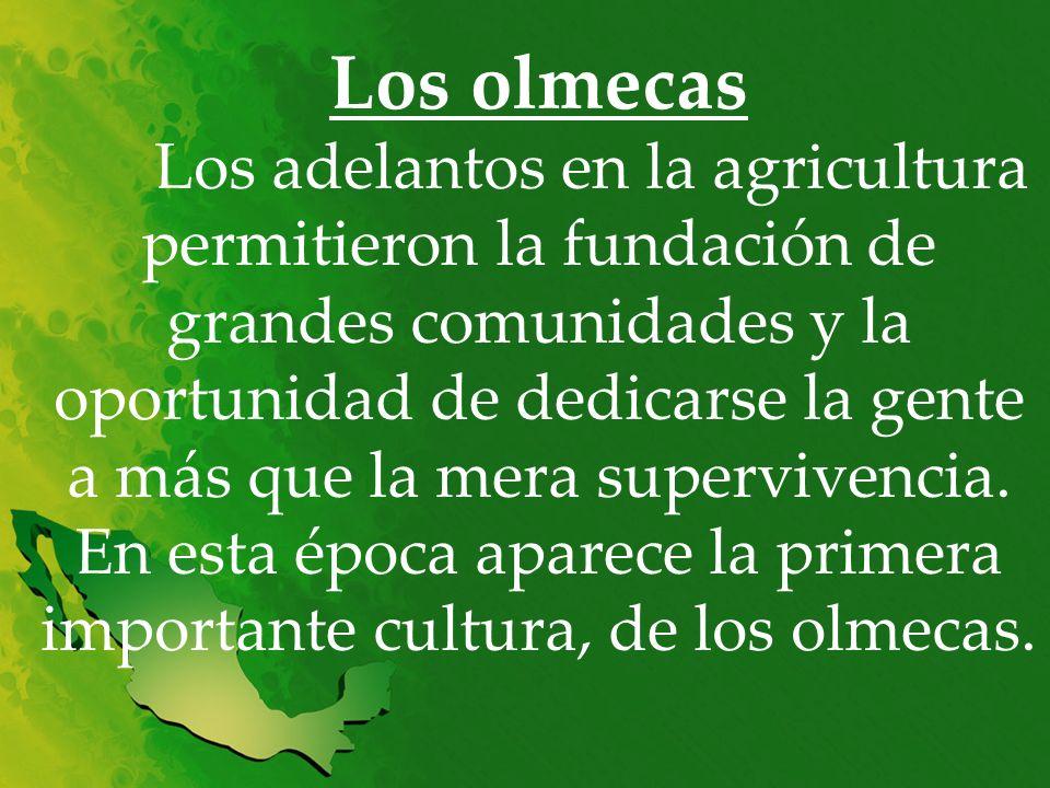 Los olmecas Los adelantos en la agricultura permitieron la fundación de grandes comunidades y la oportunidad de dedicarse la gente a más que la mera s