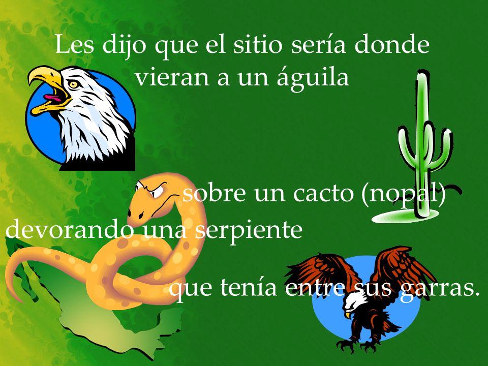 Les dijo que el sitio sería donde vieran a un águila sobre un cacto (nopal) devorando una serpiente que tenía entre sus garras.