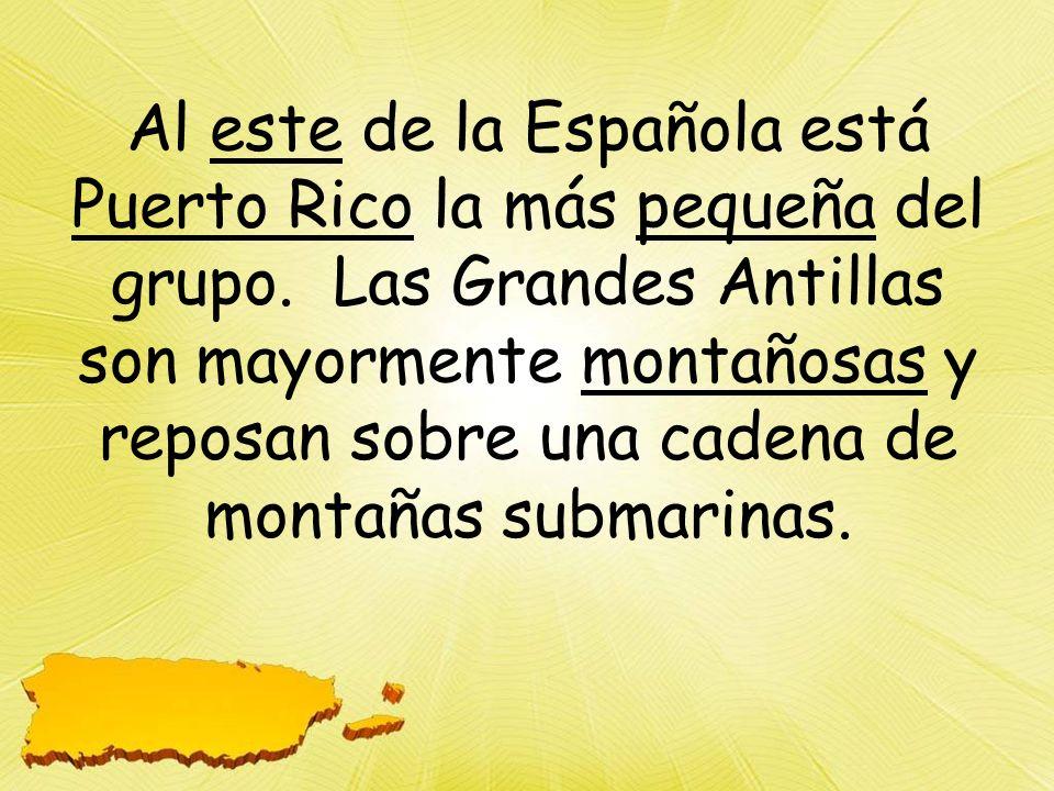 Al este de la Española está Puerto Rico la más pequeña del grupo.