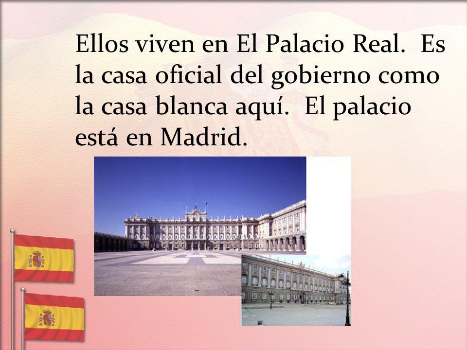 Ellos viven en El Palacio Real. Es la casa oficial del gobierno como la casa blanca aquí. El palacio está en Madrid.