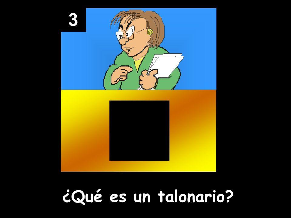 3 ¿Qué es un talonario?