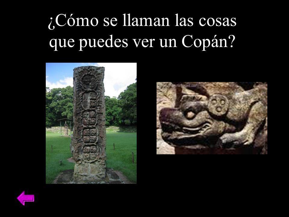 ¿Cómo se llaman las cosas que puedes ver un Copán?