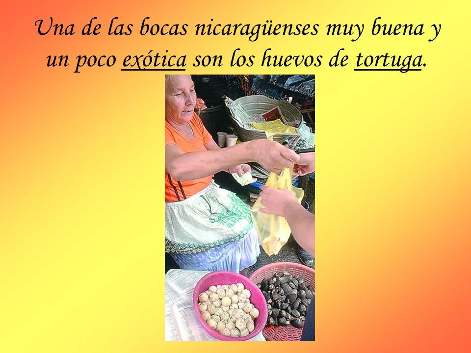 Una de las bocas nicaragüenses muy buena y un poco exótica son los huevos de tortuga.
