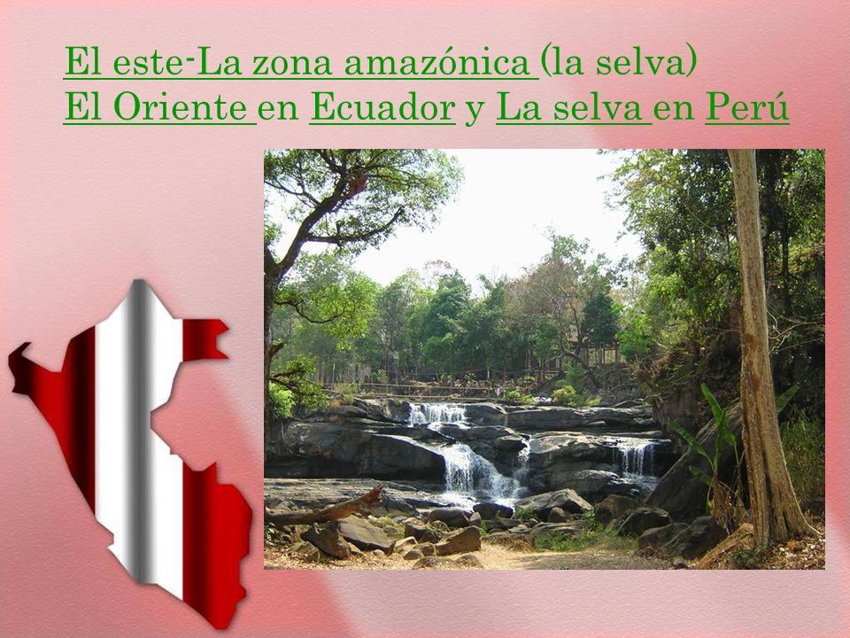 El este-La zona amazónica (la selva) El Oriente en Ecuador y La selva en Perú