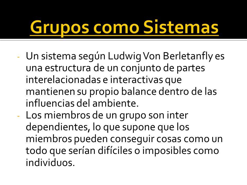 - Cada individuo tiene input en el grupo (talento, educación, experiencia, madurez.