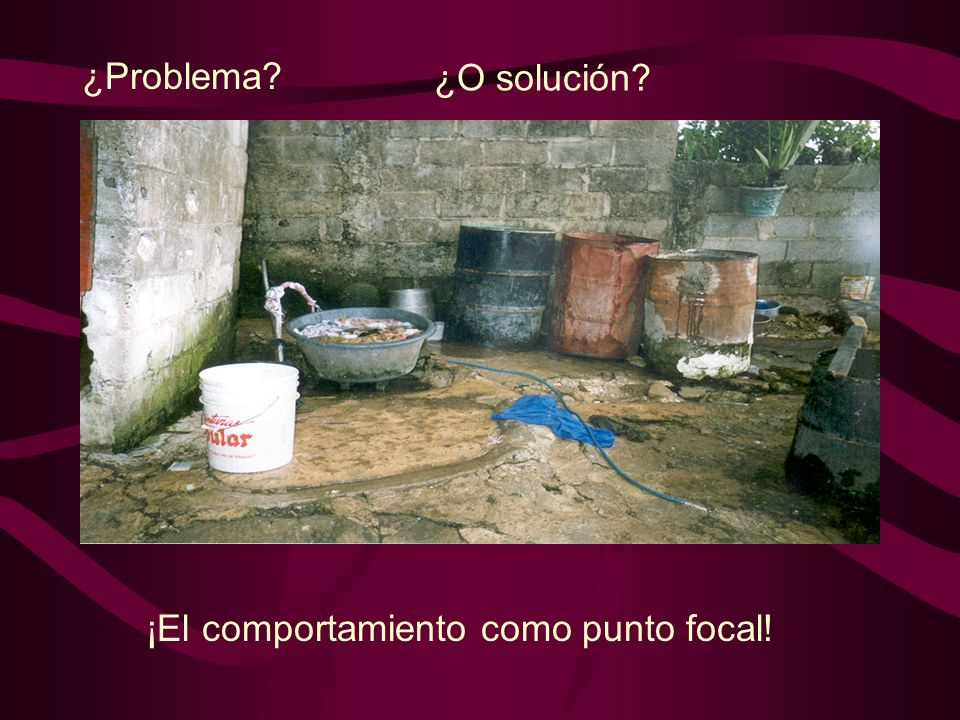 ¿Problema ¿O solución ¡El comportamiento como punto focal!