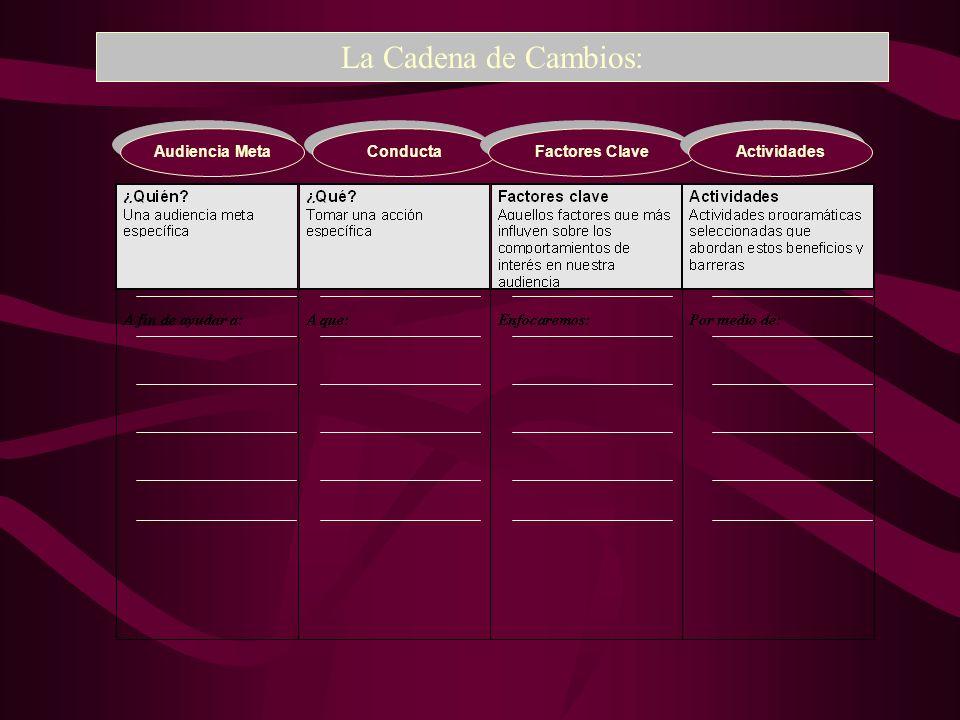 Audiencia Meta La Cadena de Cambios: Conducta Factores Clave Actividades