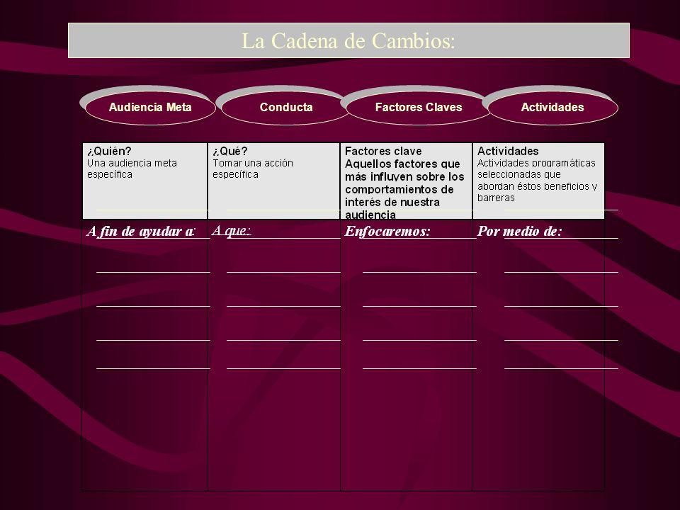 Audiencia Meta La Cadena de Cambios: Conducta Factores Claves Actividades