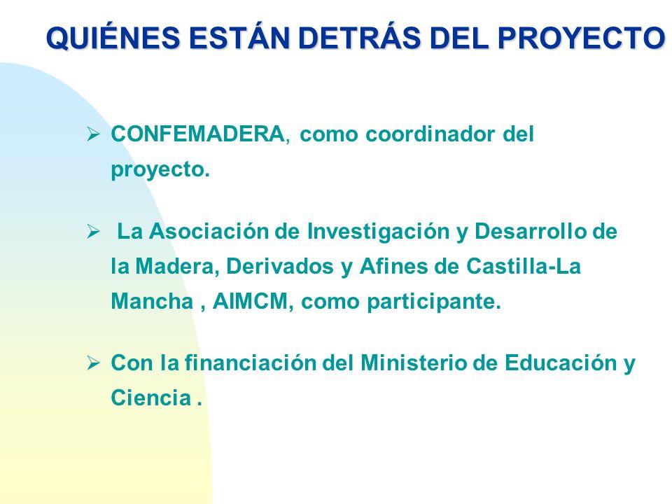 QUIÉNES ESTÁN DETRÁS DEL PROYECTO CONFEMADERA, como coordinador del proyecto. La Asociación de Investigación y Desarrollo de la Madera, Derivados y Af