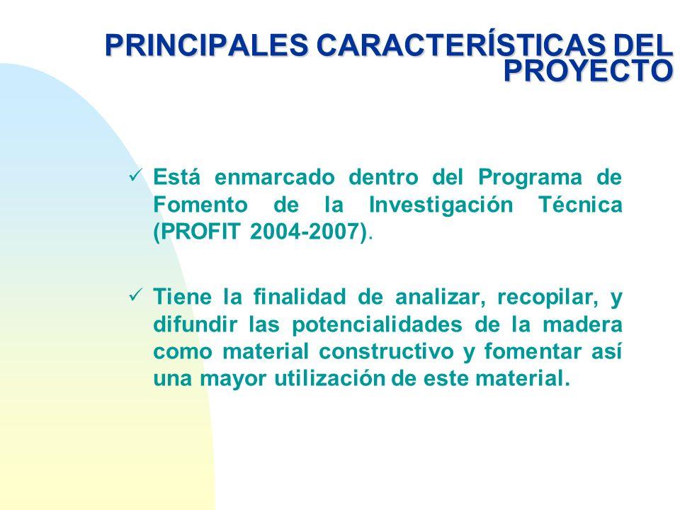 PRINCIPALES CARACTERÍSTICAS DEL PROYECTO Está enmarcado dentro del Programa de Fomento de la Investigación Técnica (PROFIT 2004-2007). Tiene la finali