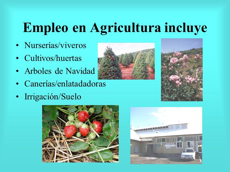 Empleo en Agricultura incluye Nurserías/viveros Cultivos/huertas Arboles de Navidad Canerías/enlatadadoras Irrigación/Suelo