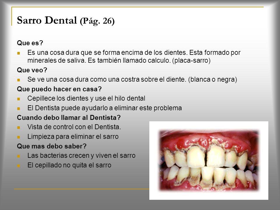 La placa dental (Pág. 24) Es una capa blanda y pegajosa de bacterias que se encuentran en las encías y dientes.(bacterias, saliva, azucares y almidón