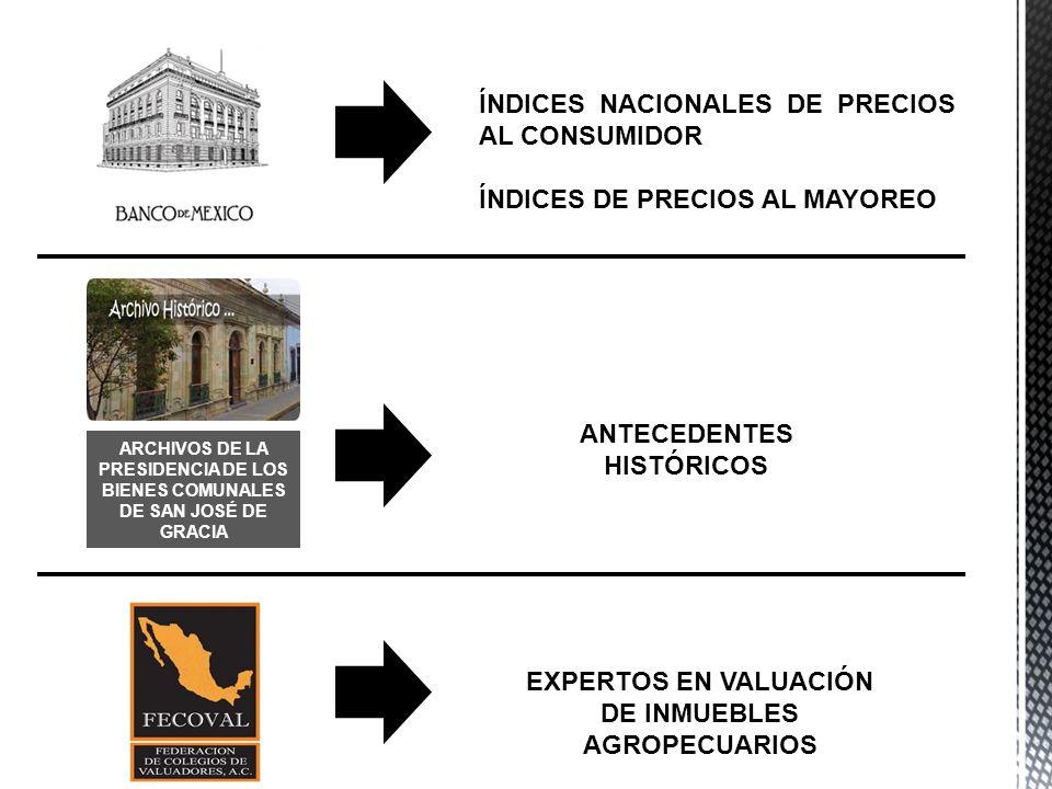 ÍNDICES NACIONALES DE PRECIOS AL CONSUMIDOR ÍNDICES DE PRECIOS AL MAYOREO ARCHIVOS DE LA PRESIDENCIA DE LOS BIENES COMUNALES DE SAN JOSÉ DE GRACIA ANT